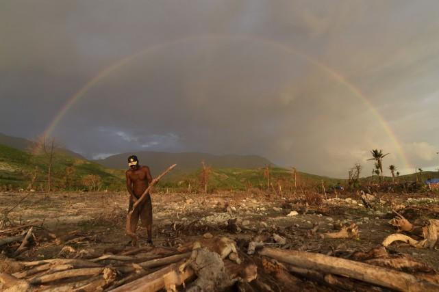 Les troncs d'arbres déracinés jonchent les champs et... (AFP)
