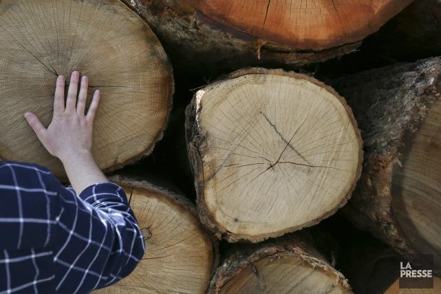 «Le dossier du bois d'oeuvre était déjà inquiétant, imaginez aujourd'hui.» (Archives La Presse)