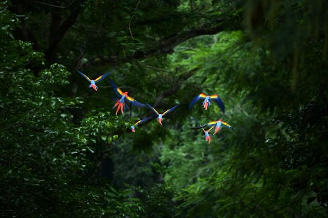 Les habitats naturels dans les endroits où la... (PHOTO ARCHIVES AFP)