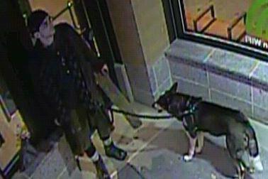 Une caméra de surveillance a capté l'image d'un... (Service de police de la Ville de Québec)