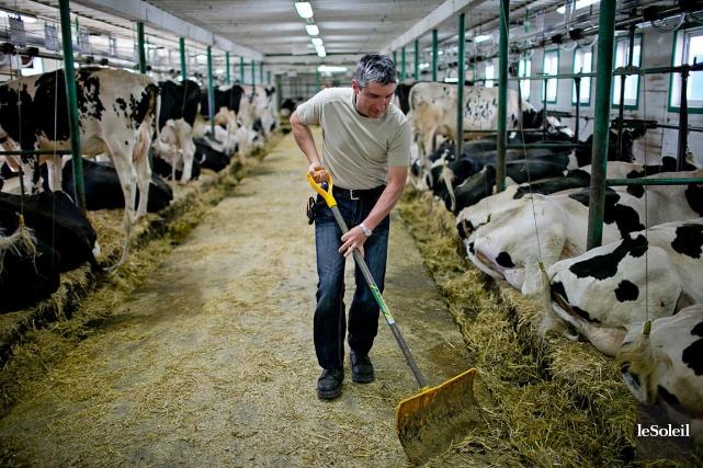 Le ministre de l'Agriculture, Lawrence MacAulay, a dévoilé... (Photothèque Le Soleil)