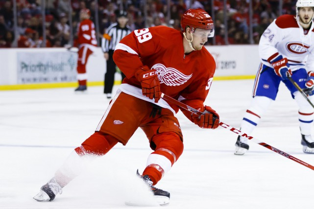 Anthony Mantha... (Photo Rick Osentoski, USA Today Sports)