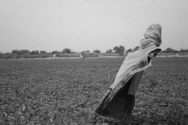 Les dormants, dePierre-Yves Vandeweerd... (Photo fournie par les RIDM)