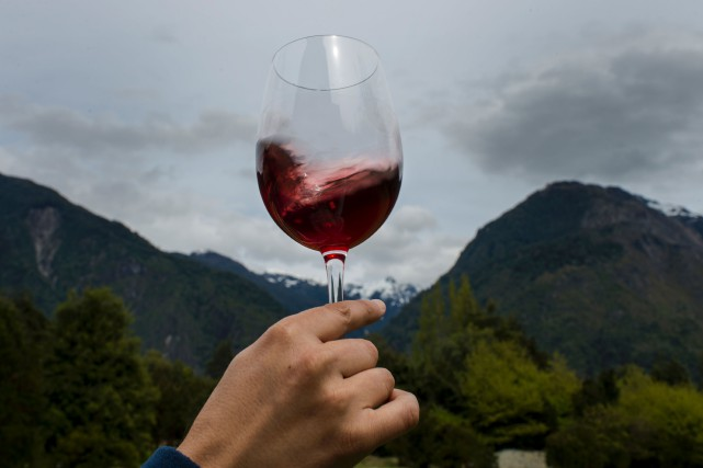 La cuvée «Puelo Patagonia», un vin rouge haut... (Photo Martin Bernetti, Agence France-Presse)