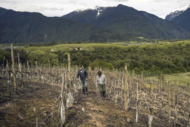 La Patagonie chilienne, connue pour son climat froid... (AFP, Miguel Sanchez)