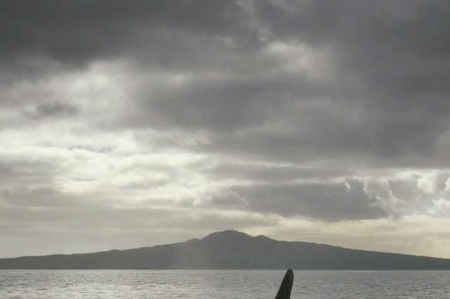 Un skipper qui travaille sur un autre bateau... (Photo REUTERS)