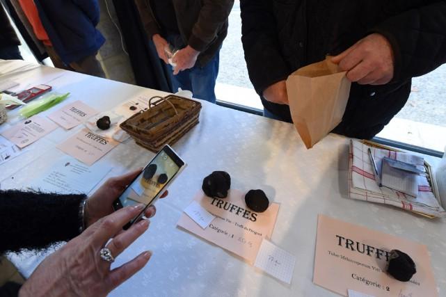 Un peu moins de 13 kg de truffes... (PHOTO AFP)