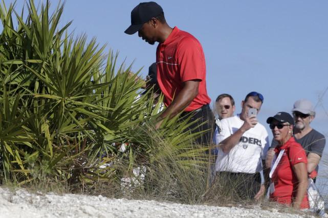 Tiger Woods a perdu sa balle dans un... (AP, Lynne Sladky)