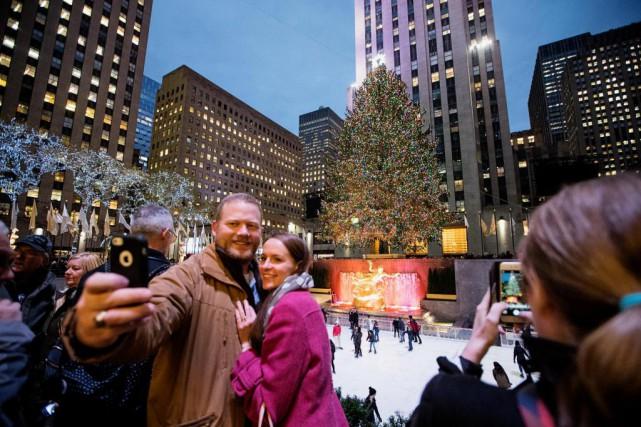 Les arbres de Noël se comptent par centaines... (PHOTO ALAIN ROBERGE, LA PRESSE)