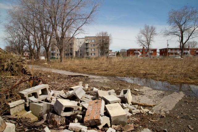 «Les propriétaires de logements locatifs obtiennent chaque année... (Photo Alain Roberge, Archives La Presse)