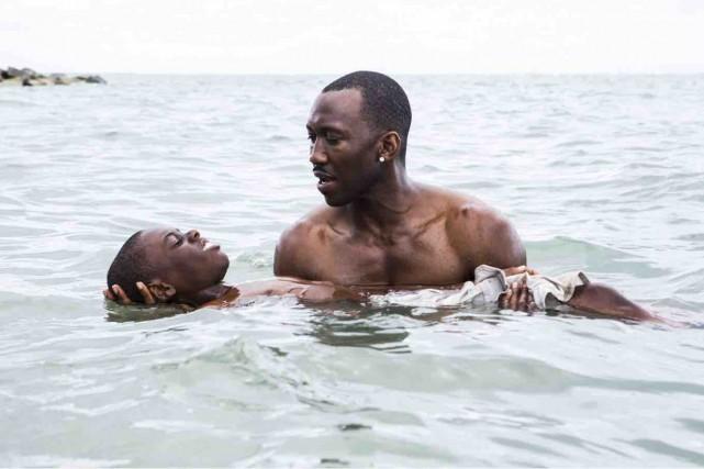 Moonlight nous entraîne dans leno man's landde Miami... (Fournie par Entract Films)