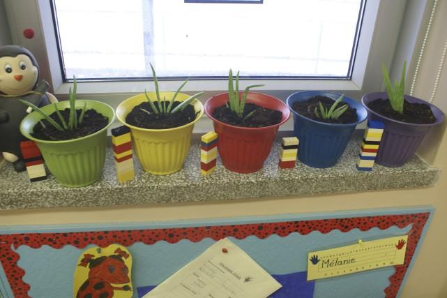 Les cinq pots, de couleurs différentes, représentent chaque... (Le Progrès-Dimanche, Mélissa Viau)