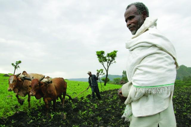 L'Éthiopie fabrique les souliers de luxe que les... (- Crédit: commons.wikimedia.org)