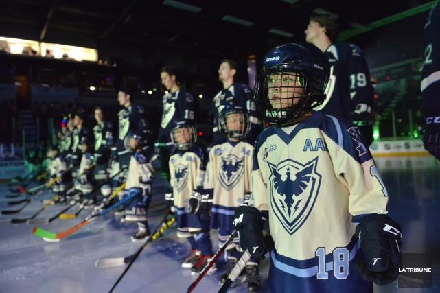 Le hockey mineur de Sherbrooke entre dans une nouvelle ère: celle du Phoenix.... (Archives La Tribune, Maxime Picard)