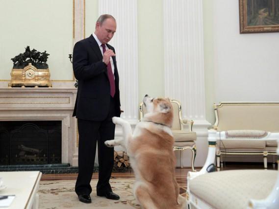 «Vladimir Poutine a gagné tous ses paris, et... (PHOTO ALEXEY DRUZHININ, SPUTNIK / AGENCE FRANCE-PRESSE)