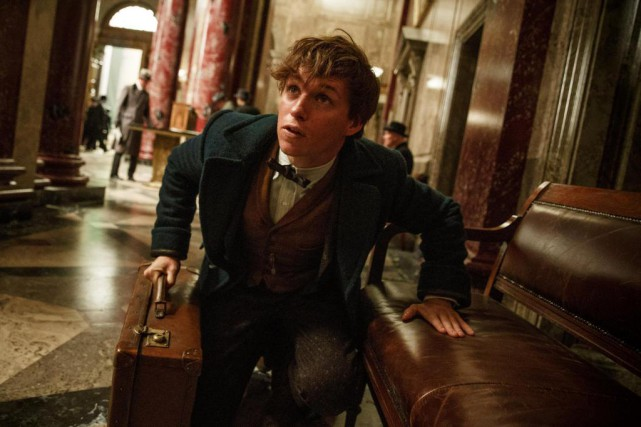 Pour Newt Scamander, c'est à la Steen National... (PHOTO FOURNIE PAR WARNER BROS. PICTURES)