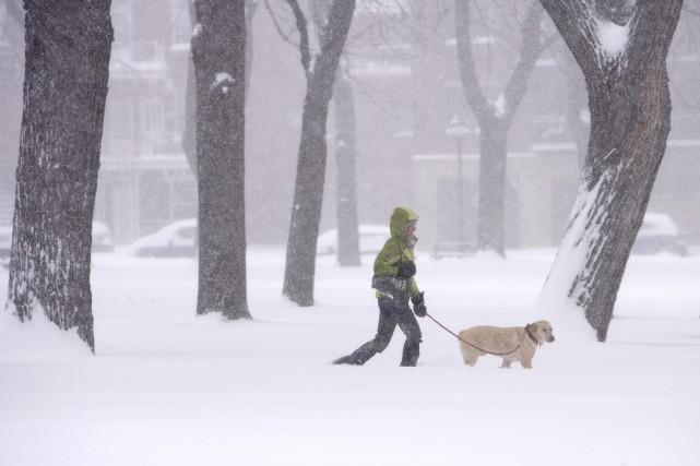 En réaction à la lettre de Danielle Hart intitulée «L'hiver et les chiens»,... (La Presse)