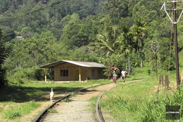 À Ella, au Sri Lanka, marcher sur le... (La Tribune, Jonathan Custeau)