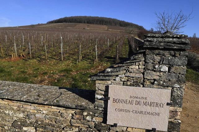 Basé à Pernand-Vergelesses (Côte-d'Or), le domaine Bonneau du... (PHOTO PHILIPPE DESMAZES, AFP)