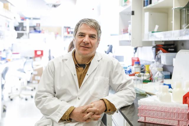 Après l'Ebola, le microbiologiste Gary Kobinger s'attaque à... (Le Soleil, Caroline Grégoire)