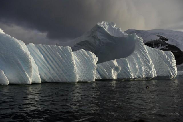 Une fois libéré, l'iceberg n'aura pas d'impact sur... (AFP)