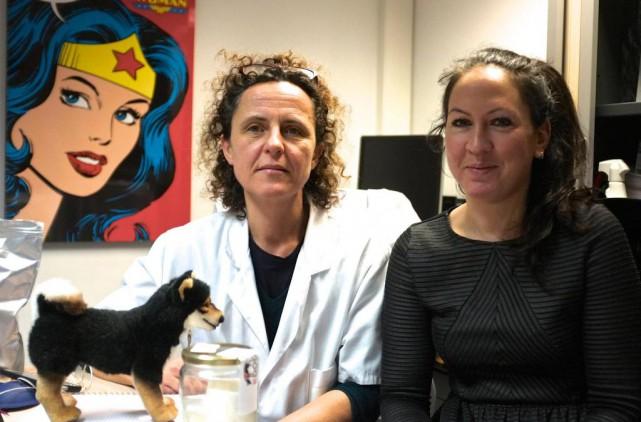 Isabelle Fromantin et Aurélie Thuleau dans leur bureau... (Photo Jean-Christophe Laurence, La Presse)