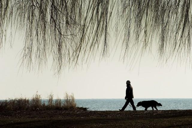 Le temps était clément près du lac Ontario,... (La Presse canadienne, Nathan Denette)