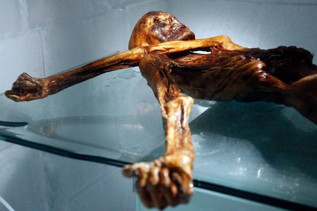 Le fait qu'Ötzi avait mangé du bouquetin avant... (Andrea Solero, archives AFP)