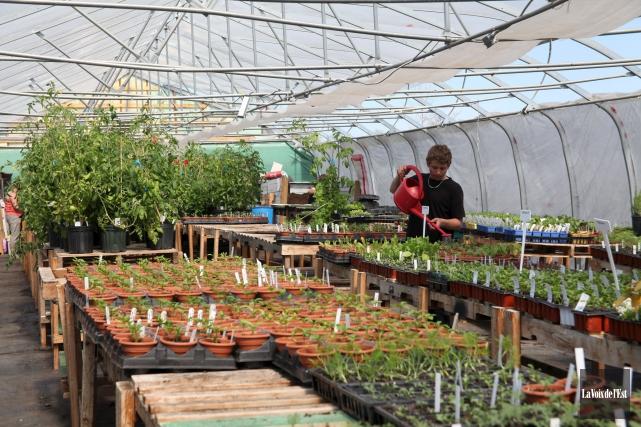 Les Jardins de la Terre recevront 5000$ pour... (archives La Voix de l'Est)