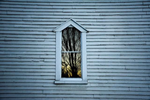 À nos pieds s'entassent les branches brisées de... (Collaboration spéciale, Michelle Boulay)