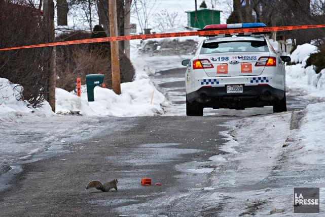 Les pneus du véhicule ont laissé des traces... (Patrick Sanfaçon, La Presse)