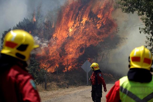 Des pompiers combattent un feu de forêt à... (Photo Juan Gonzalez, REUTERS)