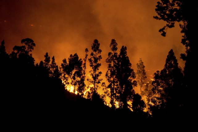 Le Chili est actuellement dévasté par les pires... (AFP, Martin Bernetti)