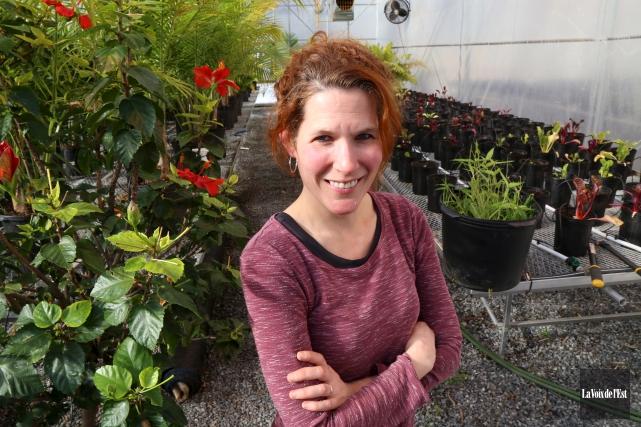 Les plantes vertes qui décorent le site et... (Janick Marois, La Voix de l'Est)