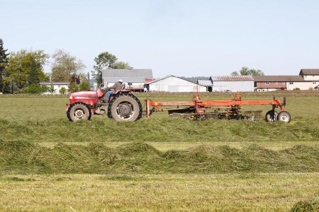 Les agriculteurs profitant du programme paient une partie... (123RF)