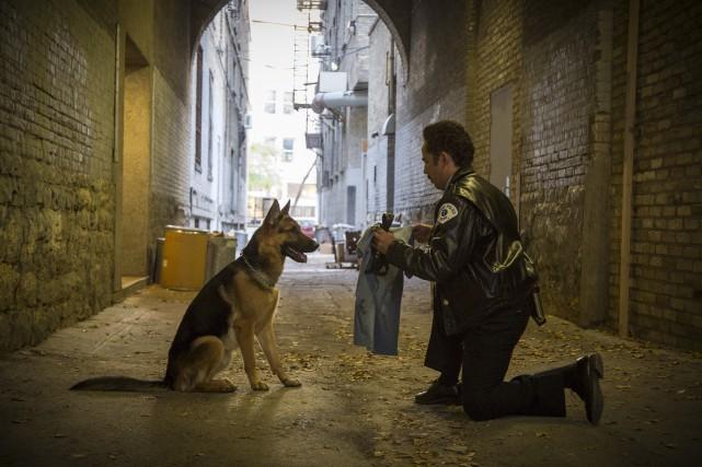 «Le chien a été sélectionné pour son amour... (AP)