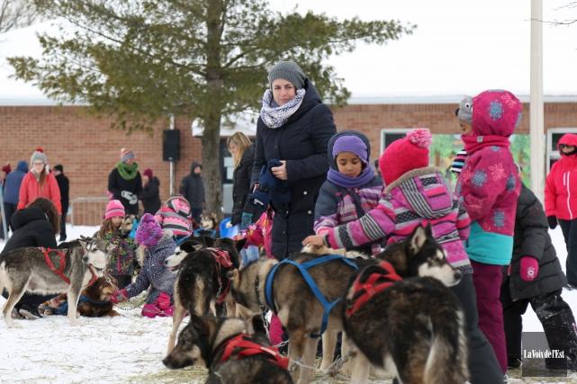 L'activité des traîneaux à chiens a été bien... (Julie Catudal, La Voix de l'Est)