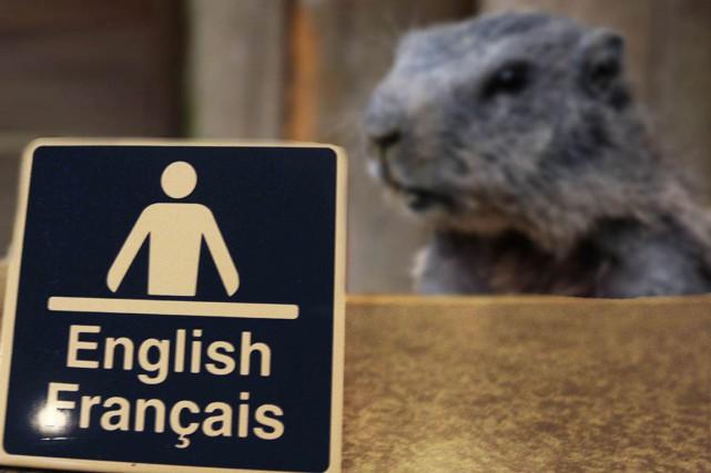 CHRONIQUE / Février est le mois de la marmotte à l'hôtel de ville d'Ottawa. Et... (Photomontage)