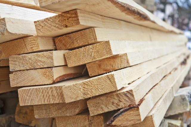 New Forest Industries a un projet de scierie... (Photo 123RF)
