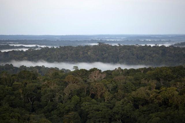 Un Canadien disparu depuis près de cinq ans a été retrouvé au Brésil après... (Photo Bruno Kelly, archives REUTERS)