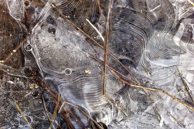 Les motifs ondulés figés dans la glace ne... (Fournie par le lecteur)