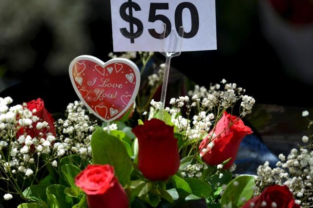 À la veille de la Saint-Valentin, des roses... (AFP, Peter PARKS)