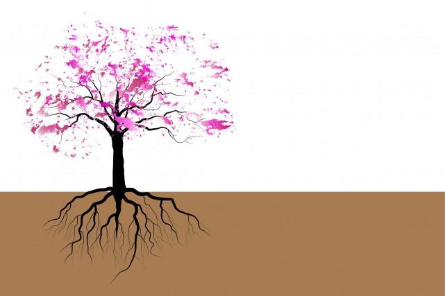 La culture, qui donne à une société sa définition, plonge ses racines les plus...