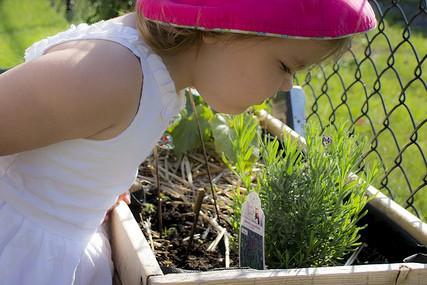 Le jardinage permet aux enfants de faire pousser... (Équiterre)