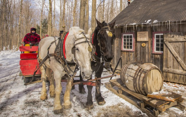 Le Village québécois d'antan propose le « bon... (Fournie)