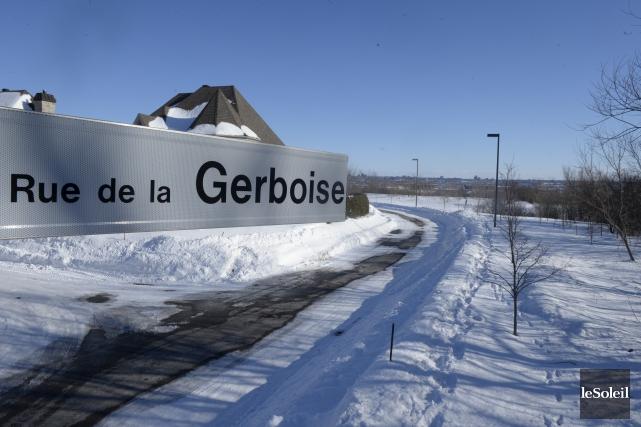 En 2011, le directeur général de la Ville... (Photothèque Le Soleil, Jean-Marie Villeneuve)