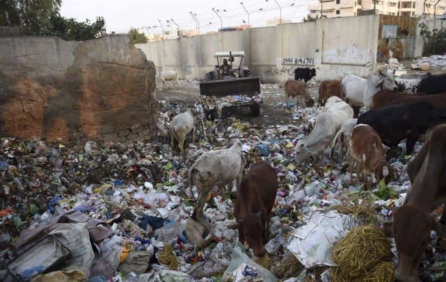 À Karachi, mégalopole pakistanaise, les 20 à 25... (AFP, Rizwan Tabassum)