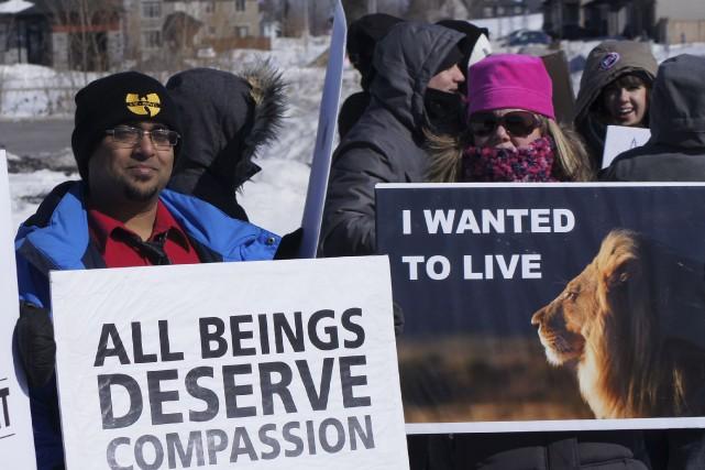 Des amoureux des animaux veulent la fermeture du... (Charles-Antoine Gagnon, Le Droit)
