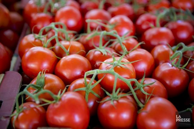 Les producteurs agricoles estriens associés auMarchéde solidarité sont... (Archives La Presse)