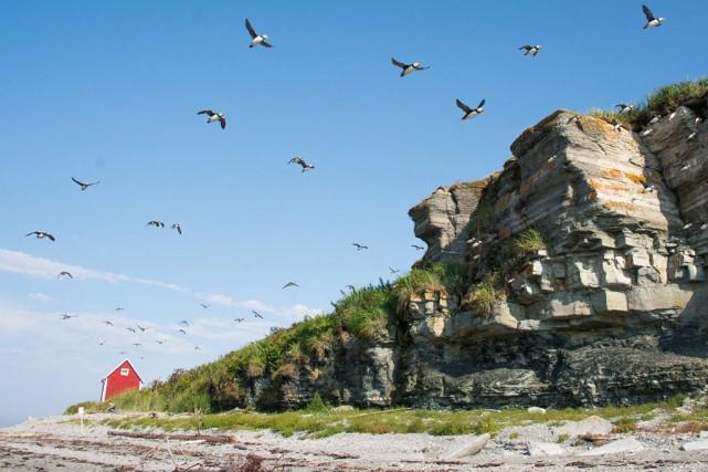 L'île aux Perroquets, sur la Côte-Nord... (Photo tirée du site web de l'Auberge de l'île aux Perroquets)